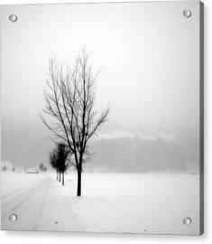 Pure White II Acrylic Print