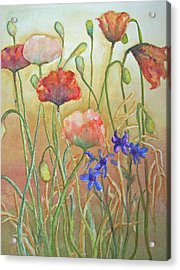 Purely Poppies Acrylic Print by Sandy Collier