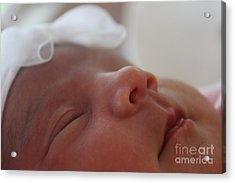 Acrylic Print featuring the photograph Purity And Innocence by Terri Thompson