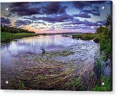 Purple Bay Acrylic Print