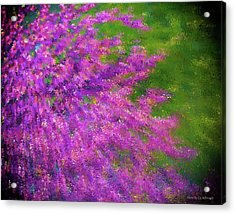 Purple Bush Acrylic Print
