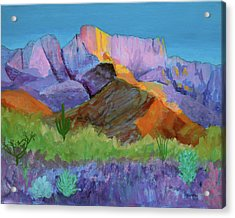 Acrylic Print featuring the painting Purple Catalina by Mordecai Colodner