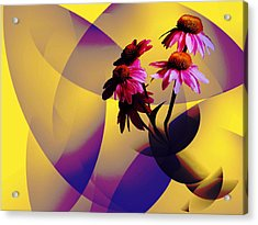 Purple Coneflowers Acrylic Print by Patricia Motley