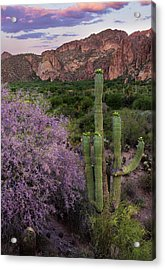 Purple Desert Beauty Acrylic Print