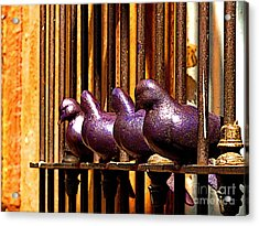 Purple Doves 1 Acrylic Print by Mexicolors Art Photography