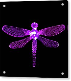 Purple Dragonfly Acrylic Print