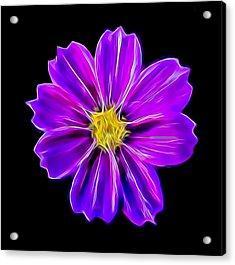 Purple Electric Acrylic Print
