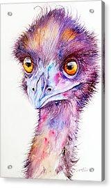 Purple Emu Acrylic Print