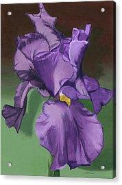 Purple Fantasy Acrylic Print by Lynne Reichhart
