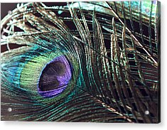 Purple Feather With Dark Background Acrylic Print