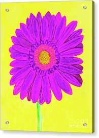 Purple  Gerbera On Yellow, Watercolor Acrylic Print by Irina Afonskaya
