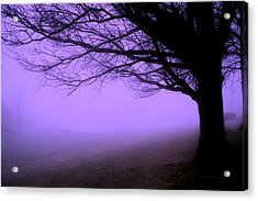 Purple Haze December Fog By The Sleepy Pin Oak Pa Acrylic Print by Thomas Woolworth