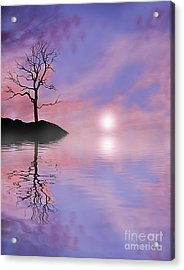 Purple Haze Acrylic Print by Kevin Williams