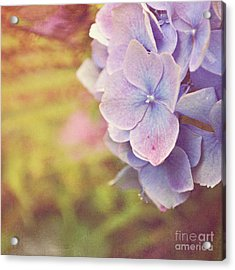 Acrylic Print featuring the photograph Purple Hydrangea by Lyn Randle