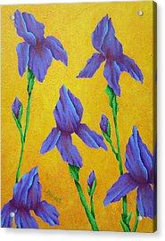 Purple Iris Acrylic Print by Pamela Allegretto