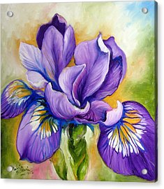 Purple Iris Wildflower Acrylic Print