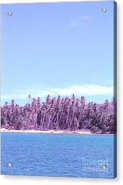 Purple Island Acrylic Print by Barbara Marcus