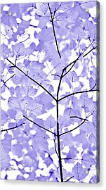 Purple Lavender Leaves Melody Acrylic Print by Jennie Marie Schell