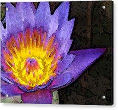 Purple Lotus Flower - Zen Art Painting Acrylic Print by Sharon Cummings