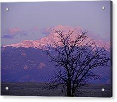 Purple Mountain Majesty Acrylic Print