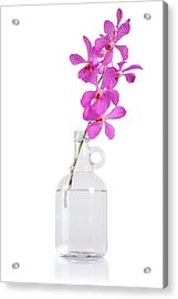 Purple Orchid Bunch Acrylic Print by Atiketta Sangasaeng
