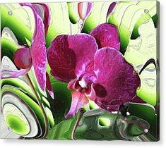 Purple Orchid Acrylic Print