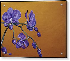 Purple Orchids Acrylic Print by Edward Williams
