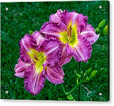 Purple Pair Acrylic Print