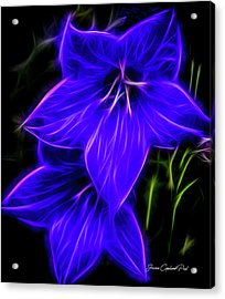 Purple Passion Acrylic Print by Joann Copeland-Paul