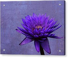 Acrylic Print featuring the photograph Purple Passion by Judy Vincent