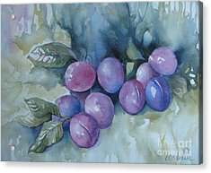 Purple Plums Acrylic Print