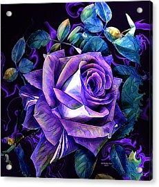 Purple Rose Bud Painting Acrylic Print