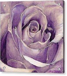 Purple Rose Acrylic Print by Enzie Shahmiri