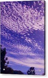 Purple Sky At Casapaz Acrylic Print by Jack Eadon