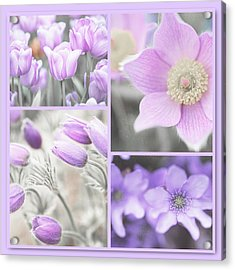 Acrylic Print featuring the photograph Purple Spring Bloom Collage. Shabby Chic Collection by Jenny Rainbow