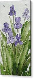 Purple Spring Acrylic Print