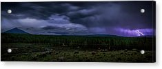 Acrylic Print featuring the photograph Purple Strikes by Cat Connor