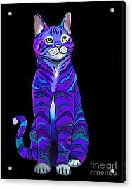 Purple Striped Cat Acrylic Print