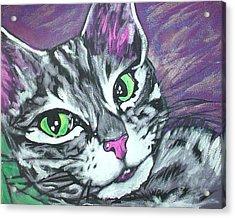 Purple Tabby Acrylic Print