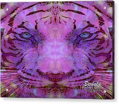 Acrylic Print featuring the photograph Purple Tiger by Barbara Tristan