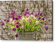 Acrylic Print featuring the photograph Purple Tulips In A Bucket by Patricia Hofmeester