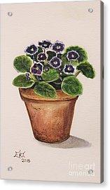 Purple Violets Acrylic Print