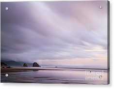 Purple Wisp In The Morning Acrylic Print