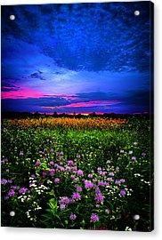 Purples Acrylic Print