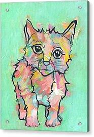 Purr-suasive Acrylic Print