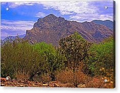 Acrylic Print featuring the photograph Pusch Ridge Morning H10 by Mark Myhaver