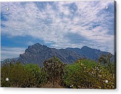 Acrylic Print featuring the photograph Pusch Ridge Morning H26 by Mark Myhaver