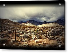 Acrylic Print featuring the photograph Push by Mark Ross