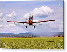 Putting It Down - Ag Pilot - Crop Duster Acrylic Print by Jason Politte