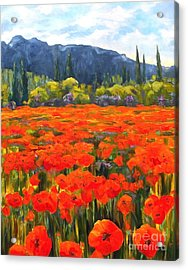 Pyrenees Poppies Acrylic Print by Diane Daigle